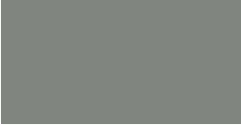 Zipscreen Aluminium colour Windspray